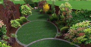3d mock up of overlapping circular lawns surrounded by plants and bushes