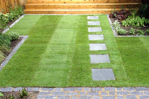 square Natural Lawn with slate stepping stone leading across