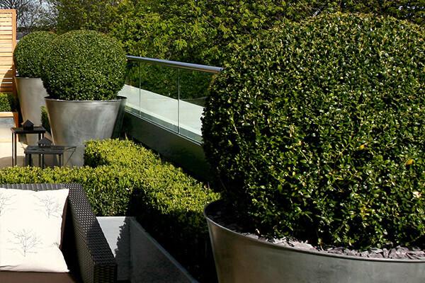 terrace-garden-North-London