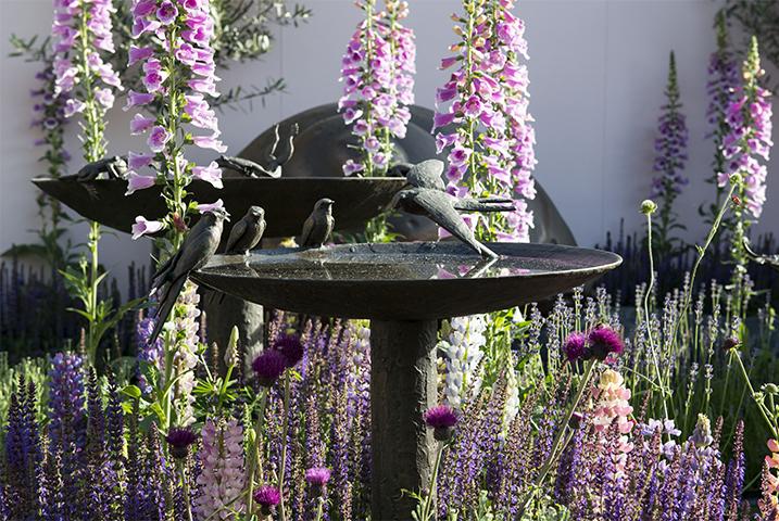 Kensington garden design