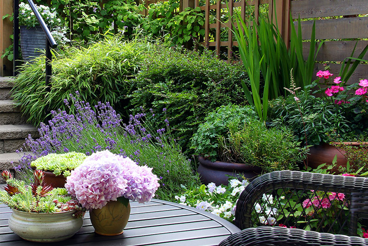 garden designer for small gardens