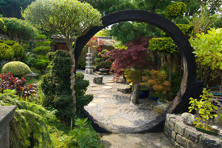 medium size Japanese gardeners
