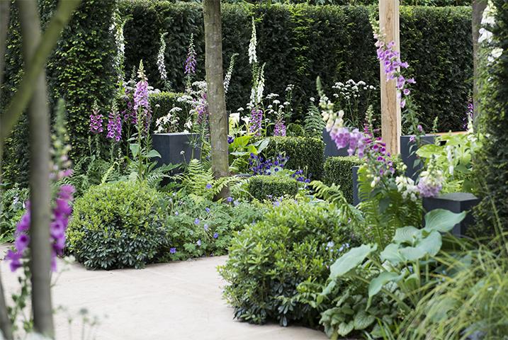 parson green garden design