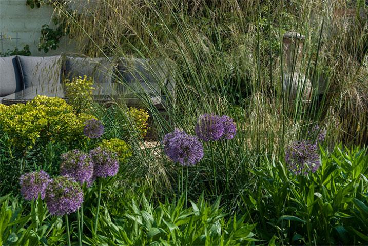 paving stone for narrow gardens