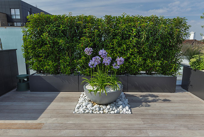 smart vertical gardens