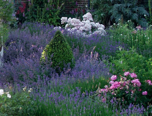 medium size Edwardian gardens